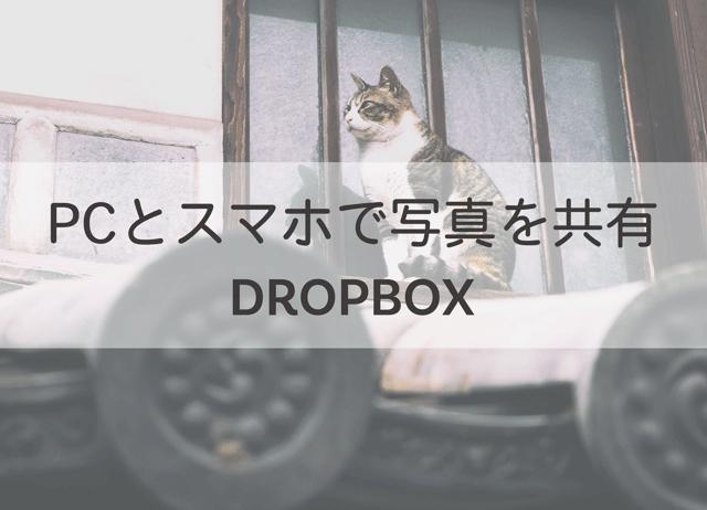 「Lightroomで編集した写真をスマホと共有するならDROPBOXがおすすめ!」のアイキャッチ画像