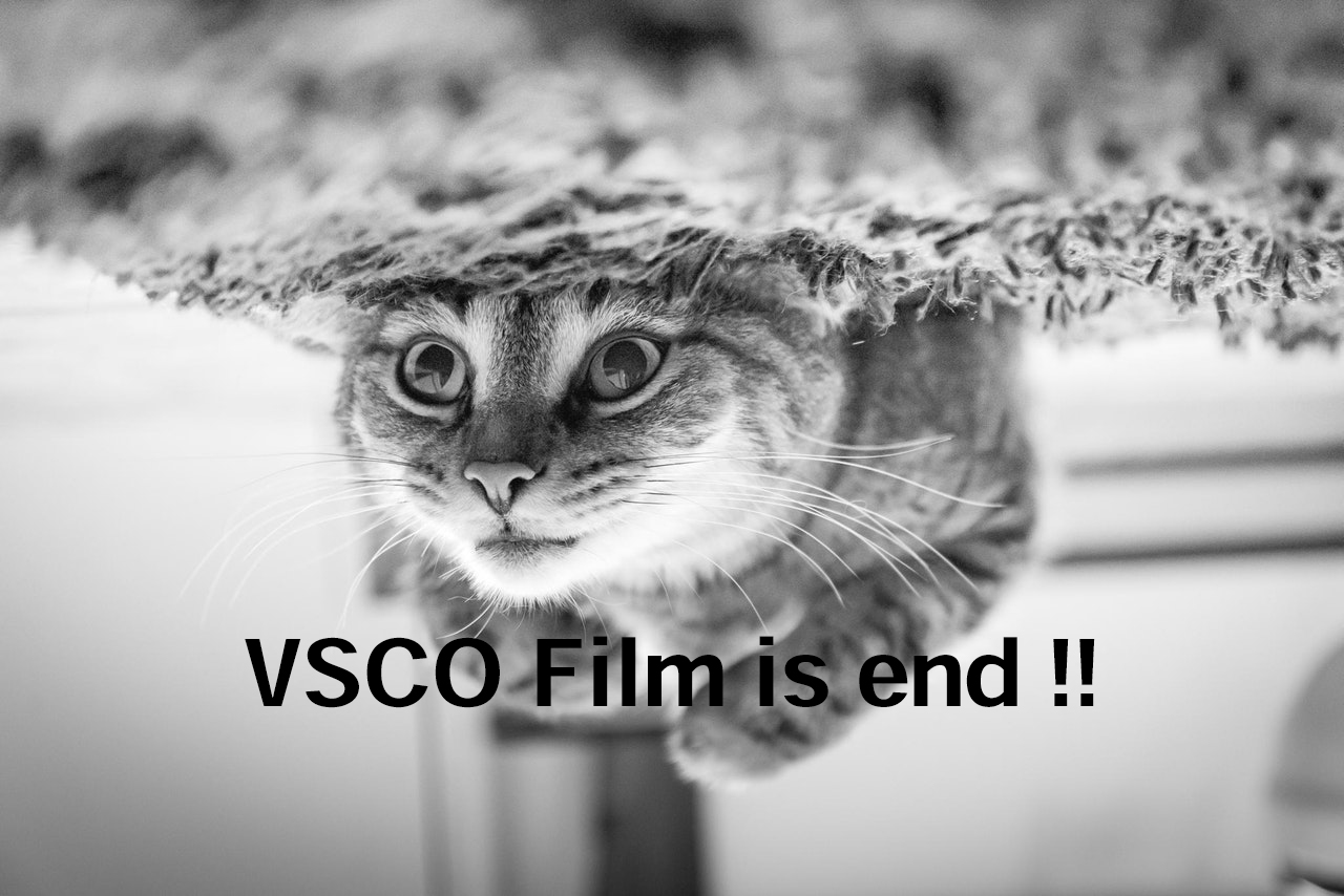 「VSCO Filmは2019年3月1日で廃止されるとのことです」のアイキャッチ画像