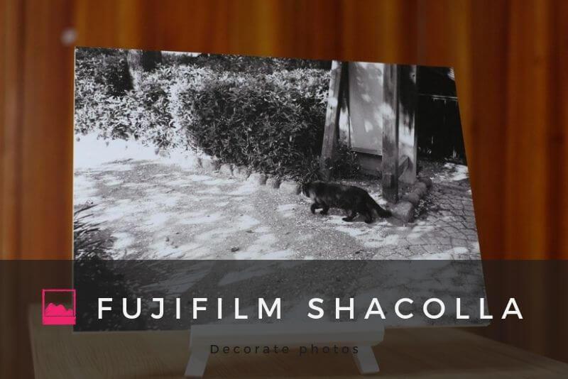 「写真展の展示方法に「FUJIFILM Shacolla(シャコラ)」をおすすめする理由」のアイキャッチ画像