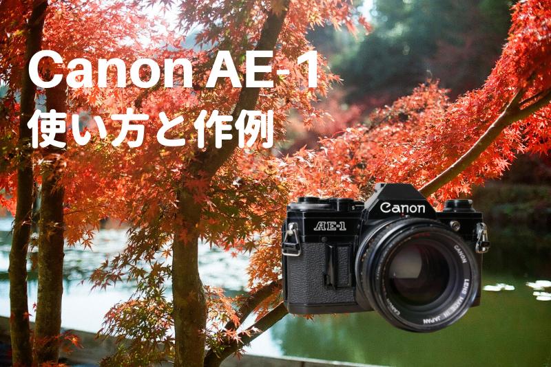「フィルム一眼レフカメラ『Canon AE-1』の使い方と作例」のアイキャッチ画像